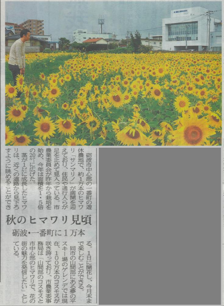 ひまわり富山新聞