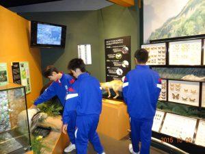 立山カルデラ砂防博物館を見学しました1